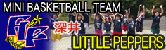 MINI BASKET BALL TEAM