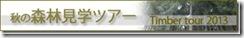clip image0042 十六夜