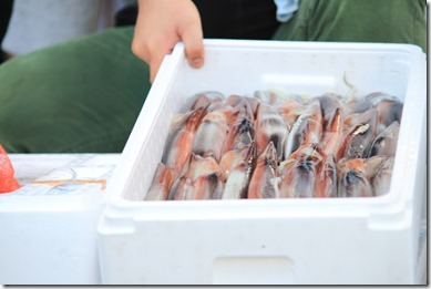 堺大魚市4