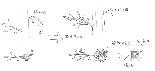 死に節の絵1_edited-1_2[1]